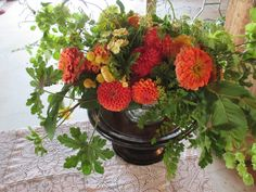 fall harvest dahlias and zinnias at floret workshop image and design by lee moore crawford