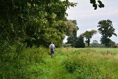 Wandelen in het Nationaal Landschap bij Winterswijk, Bredevoort, Gelderland, Nederland