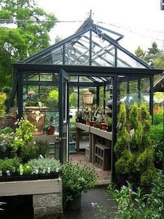 Indoor Greenhouse, Greenhouse Growing, Small Greenhouse, Greenhouse Plans, Greenhouse Gardening, Greenhouse Wedding, Plant Watering System, Wooden Greenhouses, Potting Sheds