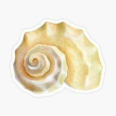 Papel Sticker, Bullet Stickers, Underwater Theme, Printable Stickers, Transparent Stickers, Glossier Stickers, Ariel, Sea Shells, Embellishments