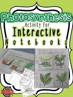 Photosynthesis Interactive notebook diagrams. Fun for students to complete, color and practice with!