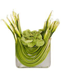 Floral Arrangement. Green. Lilies