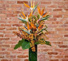 Arranjo tropical | Girassol Flores