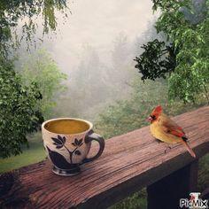 Good Morning Coffee Images, Good Morning Roses, Good Morning Good Night, Coffee Heart, Coffee Love, Gif Café, Tea Gif, Coffee Presentation, Coffee Gif