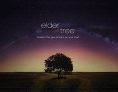 "Check out new work on my @Behance portfolio: ""The Eldertree.2015"" http://be.net/gallery/47087261/The-Eldertree2015"