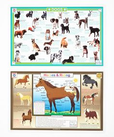 Take a look at this Your Beloved Pets!  Dogs & Let's Ride Horses Activity Place Mat Set on zulily today!