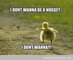 I Don't Want To Be A Nugget