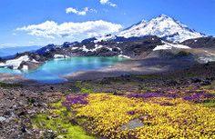 North Cascades National Park, em Washington  Suas trilhas de difícil acesso lhe renderam o título de parque menos visitado dos Estados Unidos. No entanto, a variedade de ecossistemas impressiona, bem como suas quedas d'água.  Foto: Thinkstock via Viagem e Turismo - Twitter