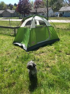 I think we figured ut our shelter for our Pictured Rocks Hiking trip! Backpacking, Outdoor Gear, Sustainability, Gears, Shelter, Rocks, Hiking, Walks, Backpacker