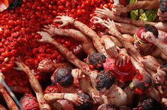 Looks gustly, but it's la tomatina! The food fight festival held on the last Wednesday of August each year at  Buñol,  Valencia,Spain. In preparation for the dirty mess that will ensue, shopkeepers use huge plastic covers on their storefronts in order to protect them. They also use about 150,000 (kg) tomatoes, just about 90,000 pounds  #travel #holidays
