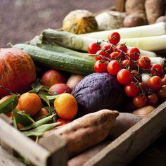 Kühlschrank richtig einräumen: So bleibt dein Essen richtig frisch