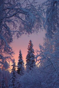 Himmlisch kann es sein, wenn man einfach nur Schnee sieht