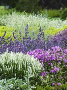 Garden with purple, lavender, pink and white floeres --- Solstice Landscape Architects LLC