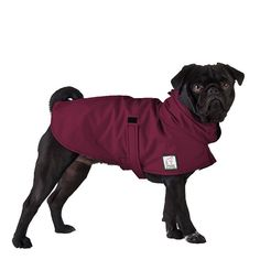 PUG Dog Rain Coat Dog Raincoat Rain Slicker by VoyagersK9Apparel