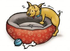 The Truth about Humping! Must Read Article!