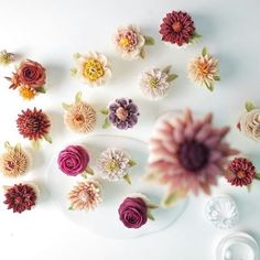 #케이크하우스림 #앙금플라워 #플라워케이크 #수제케이크 #감성사진 #일상#케잌스타그램 #flowercake #베이킹 #koreariceflowercake #beanpasteflower #beanpaste #flowercakeclass #butterflowercake #cupcake #예쁜케익#플라워케이크 #앙금플라워떡케이크 #beanflowercake #花蛋糕#꽃케익 #앙금떡케이크 #앙금#케익스타그램
