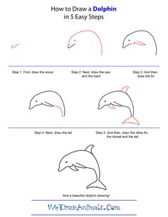 How To Draw Easy Animals Step By Step Image Guide hat you spend some time studying the distinguishing characteristic of the animal like the trunk of Drawing Skills, Drawing Lessons, Drawing Techniques, Drawing Tips, Art Lessons, Dolphin Drawing, Directed Drawing, Step By Step Drawing, Pictures To Draw