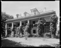 Houmas House :: Frances B. Old Southern Homes, Southern Plantation Homes, Southern Mansions, Plantation Houses, Greek Revival Architecture, Southern Architecture, French Architecture, Classical Architecture, Abandoned Plantations