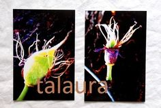 """Diese zwei Photographien entstanden für die Aktion """"KunstRaub Nr.5"""" zum Thema Kuchlbaur-Turm in Abensberg von Hundertwasser. http://de.dawanda.com..."""
