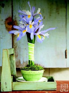 A handful of iris banded together and wrapped with ribbon makes a statuesque topiary. Any flower that has upright blooms on long stems (such as daffodils, calla lilies, or hyacinths) would work for this style of arrangement. See the step-by-step of how to make this arrangement on the next slides.