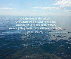 We love this Come sail the seas with us! Book your ocean adventure today. New Brunswick, Nova Scotia, Seas, Maine, Sailing, Motivational, Adventure, Quotes, Books
