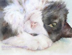 My cat watercolor is available as a cute art print and greeting cards.  Perfect gift for the cat lover in addition to wall art for the nursery.  To view more animal art by Teresa Silvestri, visit www.SilvestriStudios.com  (Photo reference thanks to April Yamaichi)