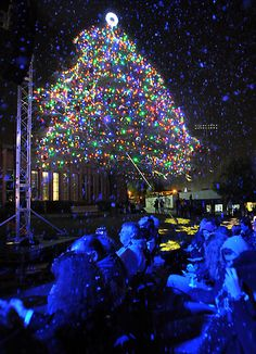 """The annual Christmas Tree Lighting in early December is probably the only time you'll ever see """"snow"""" in La Mirada"""