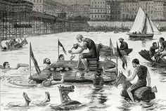 Aquatic tea party by the West Pier | Flickr - Photo Sharing!