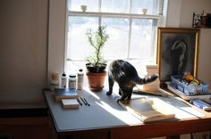 Cat and study desk by the window Study Desk, Windows, Furniture, Cats, Home Decor, Desk For Study, Gatos, Decoration Home, Room Decor