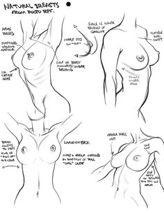 woman body drawing reference