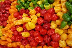 The Healing Powers Of Habanero Peppers Are Unbelievable