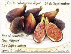 Beneficios de los Higos y las Hojas de Higuera Salud Natural, Diabetes, Pear, Food And Drink, Club, Vegetables, Figs, Cancer, Colors