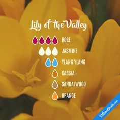 Lily of the Valley - Essential Oil Diffuser Blend