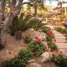 Landscape + Garden   Phoenix Home U0026 Garden