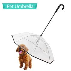 Pet Dog Umbrella With Leash for Small Dogs Puppies 20 Inches Back Length Replace, Remove the Uncomfortable Dog Raincoat Pet Dogs, Dogs And Puppies, Dog Cat, Goat Playground, Dog Umbrella, Dog Birthday Gift, Dog Toilet, Pet Resort, Dog Raincoat