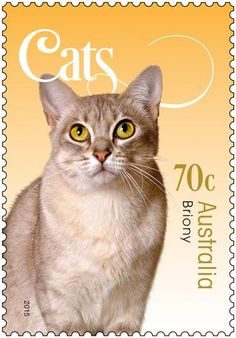 new set of cat stamps australia post shop - Google Search