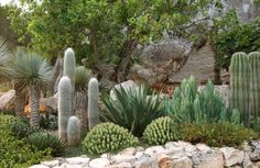 dry climate landscape designs | mallorca garden design for several years i have been designing and ...
