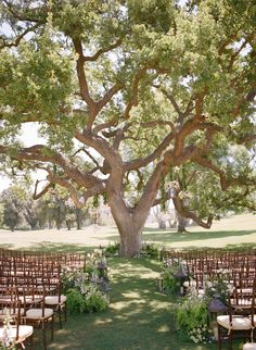 Pretty ceremony under an old Oak tree. Click to see more!   Photography : Aaron Delesie Photographer   Event Design and Production : Lisa Vorce   Floral and Event Design : Mindy Rice Read More on SMP: http://www.stylemepretty.com/2013/03/06/ojai-wedding-from-aaron-delesie-mindy-rice-lisa-vorce/