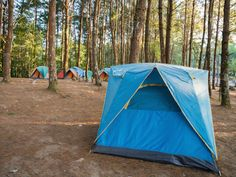 Online Resources to Plan Your Camping Trip -