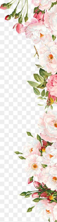 Flores cor - de - Rosa, Cor - De - Rosa, Flores, O Amigo Imagem PNG