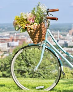 As summer cloaks the South in a mélange of brilliant color, we celebrate the splendor of our region this time of year with our annual outdoor living issue. Ladies Luncheon, Southern Ladies, Floral Arrangements, Outdoor Living, Bicycle Basket, Bloom, Flowers, Picnic, Wax
