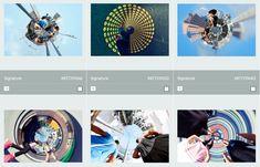 LazingBee Photos NZ (@LazingBeePhotos)   Twitter Kiwiana, Modern Contemporary, New Zealand, Commercial, Twitter, Photos, Art, Art Background, Pictures