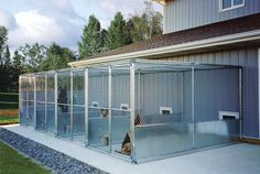 How To Build the Perfect Dog Kennel - Gun Dog Magazine.Great source of materia. How To Build the Perfect Dog Kennel – Gun Dog Magazine…Great source of materials & information Dog Boarding Kennels, Pet Boarding, Dog Kennels, Animal Boarding, Dog Kennel Designs, Dog Kennel Cover, Dog Kennel And Run, Dog Hotel, The Perfect Dog