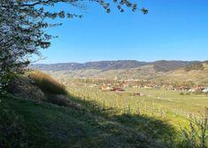 Wandern am Panoramaweg Rossatz   Wachau Inside Mountains, Nature, Travel, Hiking, Vacation, Pictures, Naturaleza, Viajes, Destinations