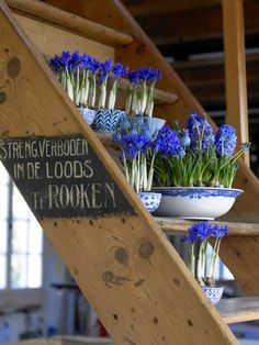 Planters for your Bulb Flowers I love grape hyacinths and they look so beautiful in the blue and white china.I love grape hyacinths and they look so beautiful in the blue and white china. Flower Beds, My Flower, Deco Nature, Blue Wedding Flowers, Purple Flowers, Bulb Flowers, Planters Flowers, Hyacinth Flowers, Blue Hyacinth