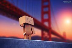 Golden Gate Bridge, San Francisco, Ca Box Robot, Robot Costumes, Amazon Box, Danbo, Cute Box, Lonely, Pictures, Photography, Golden Gate