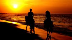 romantic Couple horse back riding | Free Download Hd Romantic Couple Riding Horses In Sunset HD Wallpaper