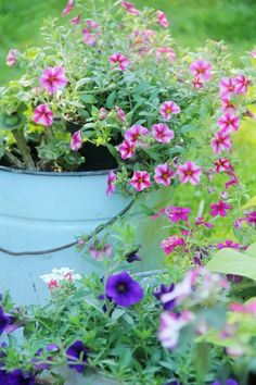 This would be a good way to add some variety and colour. Maybe look for old buckets at garage sales and paint them.