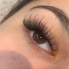The best easy fan volume lashes and off! GEMERRY is the professional eyelash extensions supplies, we can provide wholesales and private label. If you are interested please let us know, we can provide 2 trays free samples. Natural Fake Eyelashes, Wispy Eyelashes, Perfect Eyelashes, Longer Eyelashes, Eyelash Extensions Styles, Volume Lash Extensions, Eyelash Extensions Natural, Kylie Jenner Eyelash Extensions, Maquillage Kylie Jenner