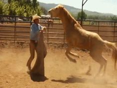 buck brannaman clinic - this poor horse! The owner failed him terribly